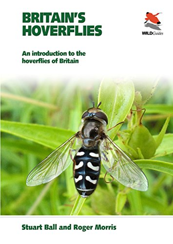9780691156590: Britain's Hoverflies: An Introduction to the Hoverflies of Britain (WILDGuides)
