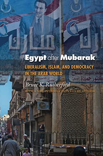 9780691158044: Egypt after Mubarak: Liberalism, Islam, and Democracy in the Arab World