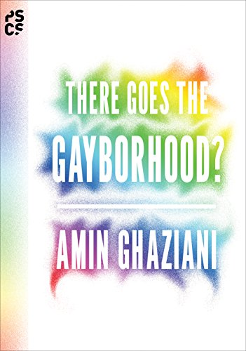 9780691158792: There Goes the Gayborhood? (Princeton Studies in Cultural Sociology)