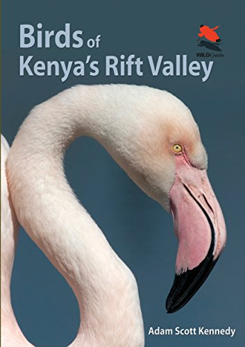 9780691159072: Birds of Kenya's Rift Valley (Wildlife Explorer Guides)