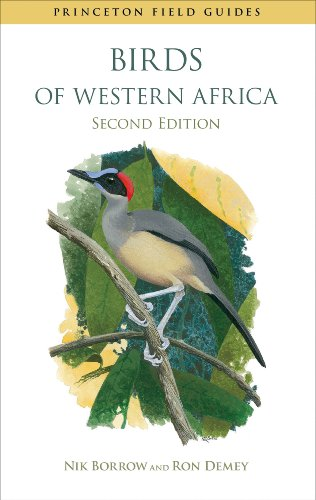 Birds of Western Africa (Paperback): Nik Borrow