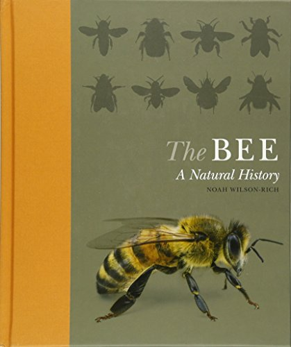 9780691161358: The Bee: A Natural History