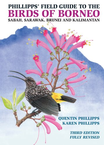 Phillipps' Field Guide to the Birds of Borneo: Sabah, Sarawak, Brunei, and Kalimantan, Fully ...