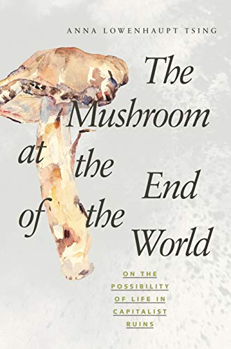 9780691162751: The Mushroom at the End of the World: On the Possibility of Life in Capitalist Ruins