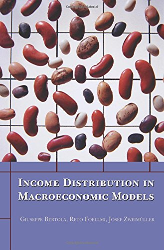 9780691164595: Income Distribution in Macroeconomic Models