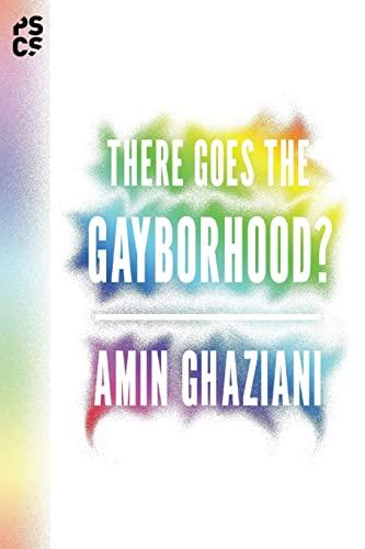 9780691168418: There Goes the Gayborhood? (Princeton Studies in Cultural Sociology)