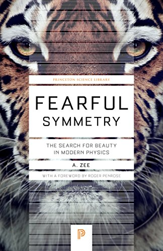 9780691173269: Fearful Symmetry: The Search for Beauty in Modern Physics (Princeton Science Library)