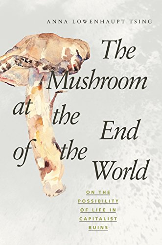 9780691178325: The Mushroom at the End of the World: On the Possibility of Life in Capitalist Ruins