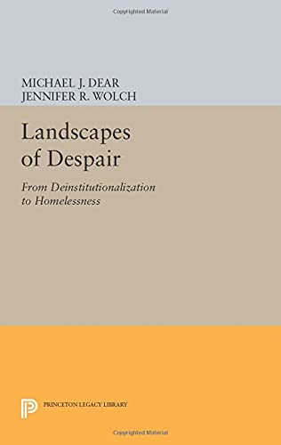 9780691601403: Landscapes of Despair: From Deinstitutionalization to Homelessness (Princeton Legacy Library)