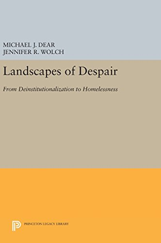 9780691631110: Landscapes of Despair: From Deinstitutionalization to Homelessness (Princeton Legacy Library)