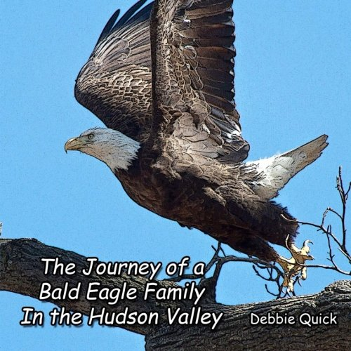 The Journey of a Bald Eagle Family: In the Hudson Valley: Debbie Quick