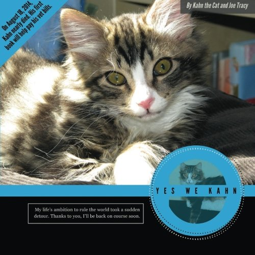 Yes We Kahn: A photo book written by Kahn the Cat to help pay for his (and others) emergency ...