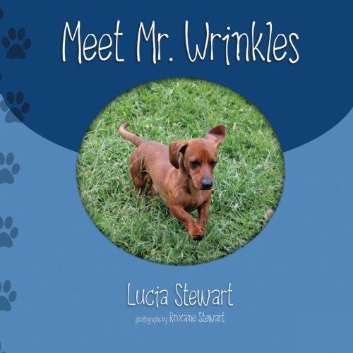 9780692371466: Meet Mr. Wrinkles