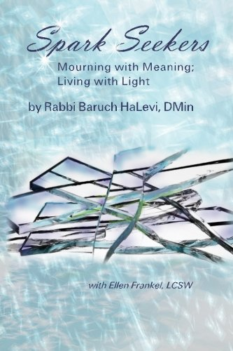 9780692404164: Spark Seekers: Mourning with meaning; Living with light