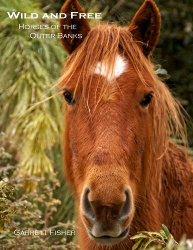 Wild and Free: Horses of the Outer Banks: Garrett Fisher