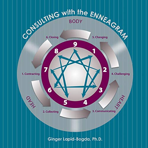 9780692412695: Consulting with the Enneagram