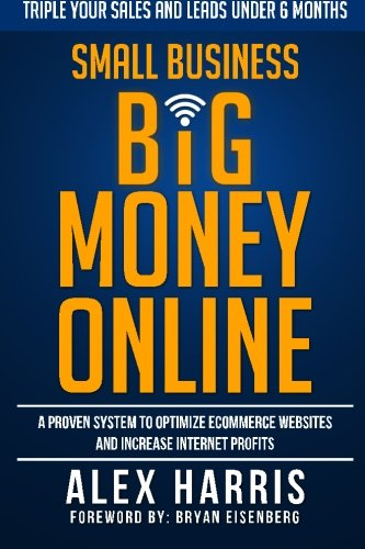 9780692466032: Small Business Big Money Online: A Proven System to Optimize eCommerce Websites and Increase Internet Profits