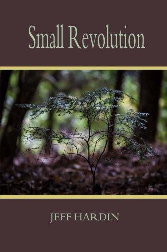 9780692570876: Small Revolution