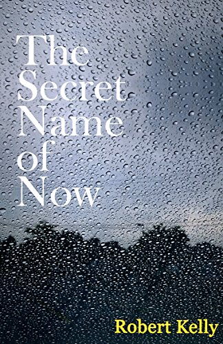9780692742006: The Secret Name of Now