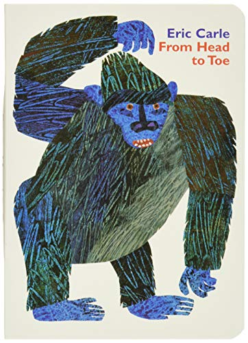 9780694013012: From Head to Toe Board Book