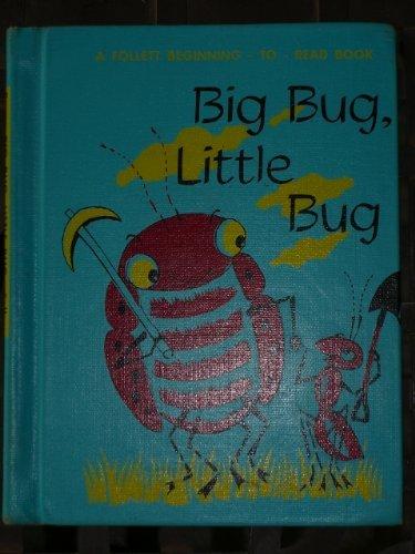 9780695407582: Big Bug, Little Bug: A Follett Beginning to Read Book