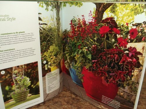 Container Gardening Made Easy: Better Homes and