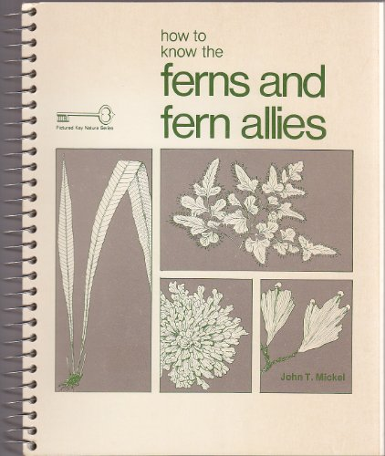 9780697047717: How to Know the Ferns and Fern Allies (The Pictured Key Nature Series)