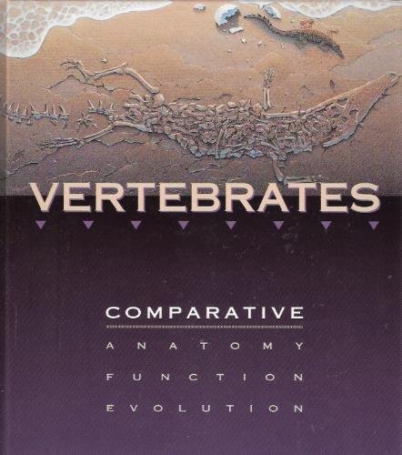 Vertebrates comparative anatomy