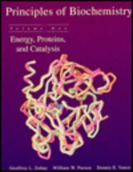 9780697241696: Principles of Biochemistry: Energy, Proteins, and Catalysis
