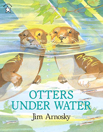 9780698115569: Otters under Water