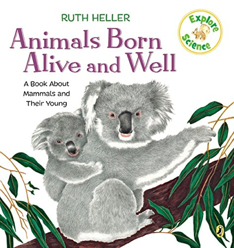 9780698117778: Animals Born Alive and Well: A Book About Mammals (Explore!)