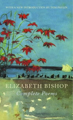 an interpretation of the fish a poem by elizabeth bishop
