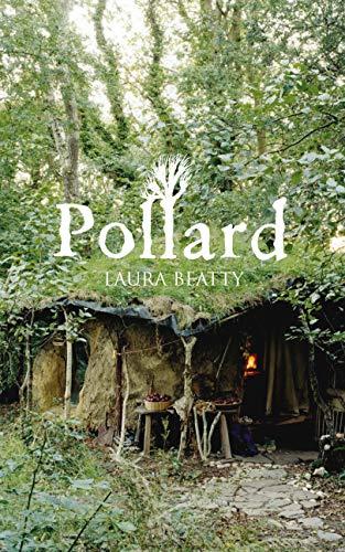 9780701182090: Pollard