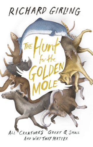 9780701187156: The Hunt for the Golden Mole: All Creatures Great & Small and Why They Matter