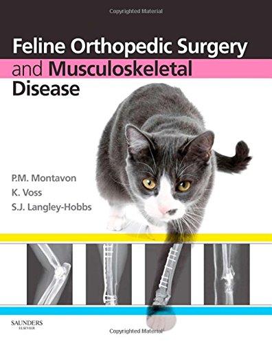 9780702029868: Feline Orthopedic Surgery and Musculoskeletal Disease, 1e