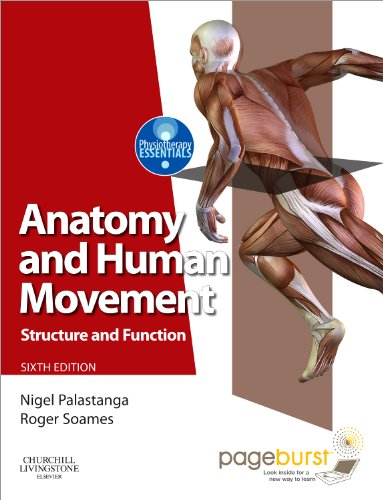 9780702035531: Anatomy and Human Movement: Structure and function with PAGEBURST Access, 6e (Physiotherapy Essentials)