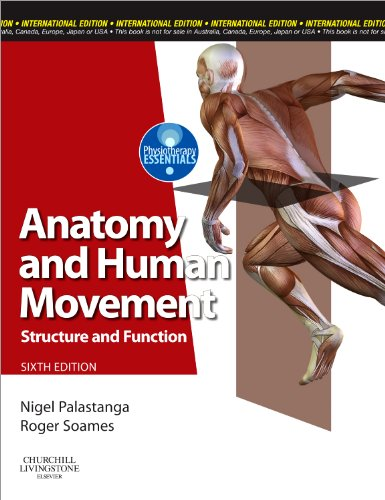 9780702040535: Anatomy and Human Movement: Structure and Function (Physiotherapy Essentials)