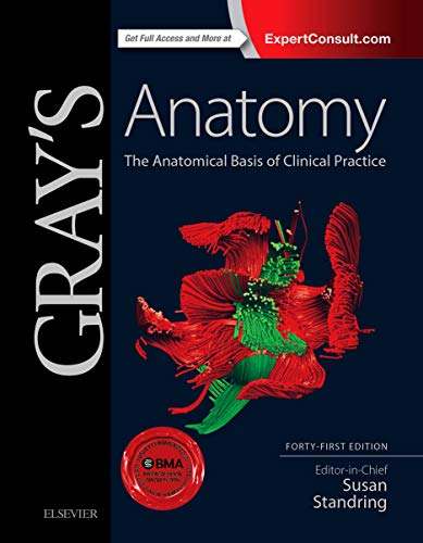 9780702052309: Gray's Anatomy: The Anatomical Basis of Clinical Practice, 41e