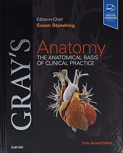 9780702077050: Gray's Anatomy: The Anatomical Basis of Clinical Practice