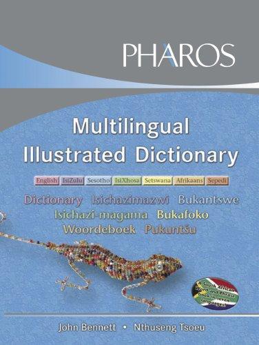 Multilingual Illustrated Dictionary: English/IsiZulu/Sesotho/IsiXhosa/Setswana/Afrikkaans/Sepedi: English, IsiZulu, Sesotho,: John Bennett; Nthuseng
