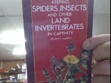 9780702880209: Keeping Spiders, Insects and Other Land Invertebrates in Captivity (Pet Care Guides)