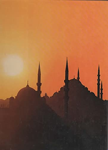 Istanbul (Great Cities): Colin Thubron