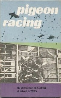 9780706123876: Pigeon Racing