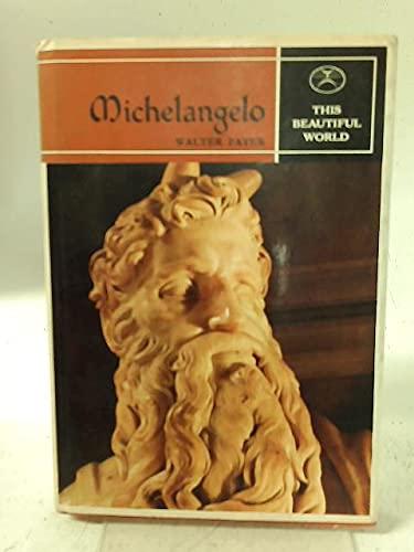 9780706310931: Michelangelo (This Beautiful World)