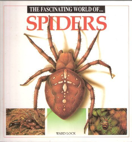 Fascinating World of Spiders (Fascinating world of animals): Maria Angels Julivert