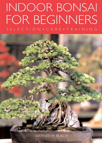 Indoor Bonsai For Beginners: Selection * Care * Training