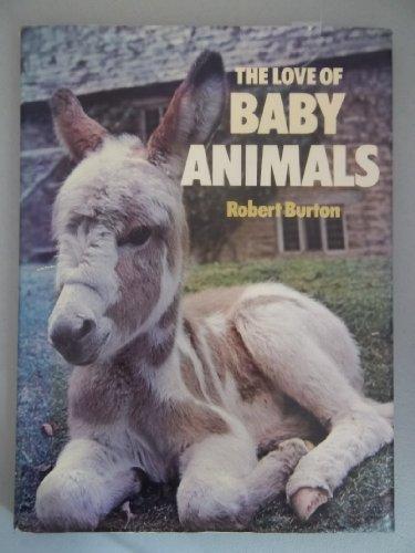 The Love of Baby Animals: Burton, Robert