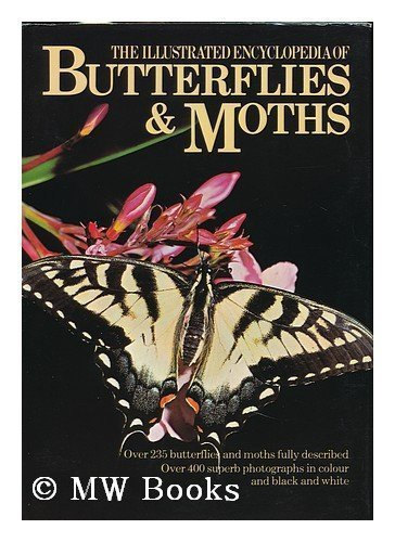 9780706405477: The illustrated encyclopedia of butterflies & moths