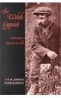 Welsh Gypsies: Children of Abram Wood (University of Wales - Pocket Guide)