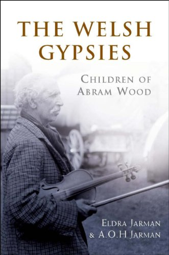 9780708323984: The Welsh Gypsies: Children of Abram Wood